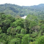 Napo River from afar