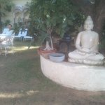 Anuraag villa : le jardin