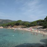 Palombaggio beach