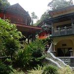 Jungle Inn  Bukit Lawang