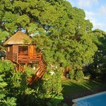 Photo of Tree Lodge Mauritius
