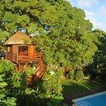 Tree Lodge Mauritius Foto