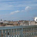 une vue magnifique sur Essaouira-Mogador