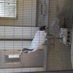 姫路市立動物園の写真その1