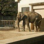 姫路市立動物園の写真その2