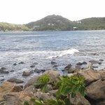 piegon island