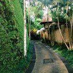 Walking in the resort.
