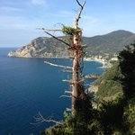 On the trail to Vernazza
