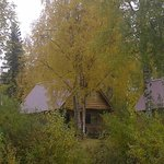 View of cabin from banks of the Susitna River