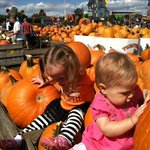 Fun at Pumpkinland!