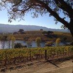 Quintessa Vineyards