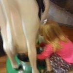 more milking
