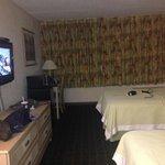 habitacion 2 camas dobles