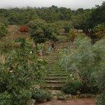 Photo de Agriturismo Terrammare
