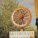 Mormoraia Sign