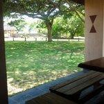 Mozambique country garden