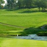 Golf Course II