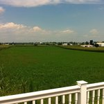 View-from-back-deck-Amish-Country-Motel-in-Bird-in-Hand-PA
