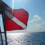 dive flag flying high!