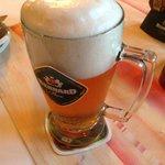 Bernard beer at Cerny kun