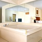 2 Person Whirlpool Room (Whirlpool is in the bedroom)
