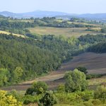 View of Tuscany from Renello