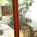 Mango courtyard - Mi Casa Cozumel