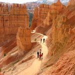 Bryce Canyon has many trails...