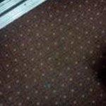 dusty, worn carpets