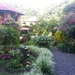 Vista externa do grande jardim