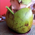Fresh coconut juice to bit the heat
