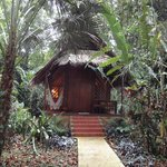 Photo of Hotel Shawandha Lodge