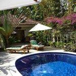 Chalet und Pool