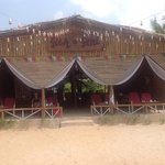 The best shack on the beach, Fish and Feni
