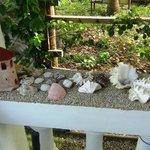 Photo de The Cove House