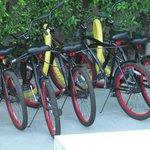 Hotel provides bikes