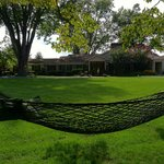View from the two-person hammock by the brook