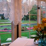 View of park from dining room table