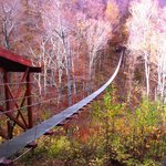 Fall is a great season to zipline at Hunter