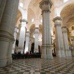 Impresionante bosque de columnas