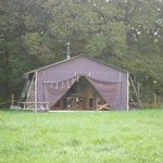 The tents at Lipley Farm