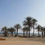 Playa Rosas