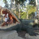 un cocodrilo le come a mi hijo pequeño