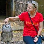 Bonding with THE Verreaux's Eagle-Owl (Bubo lacteus)
