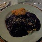 mole poblano - breast of chicken with rice