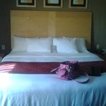 Large Bed with Slanted Back Board for Comfort