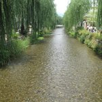 A short walk away - gorgeous stream