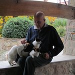 Meteora'da bir manastır ziyareti