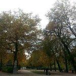 Parc de Bruxelles in Autumn