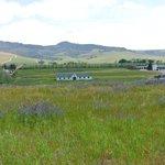 View of farmland